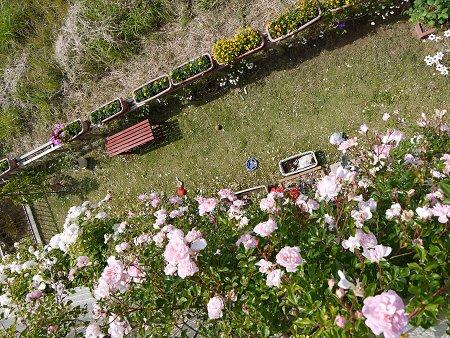 2階のベランダから庭を見下ろす