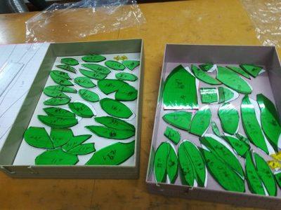 葉のデザインに使うランバーツ社製の緑のガラス