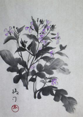 水墨画「ルッコラ」 福田勝司筆