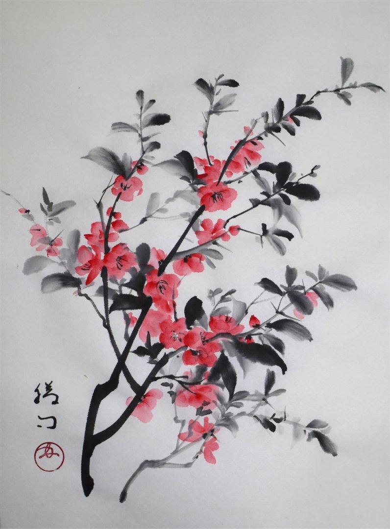 彩墨画「木瓜(ボケ)」福田勝司筆