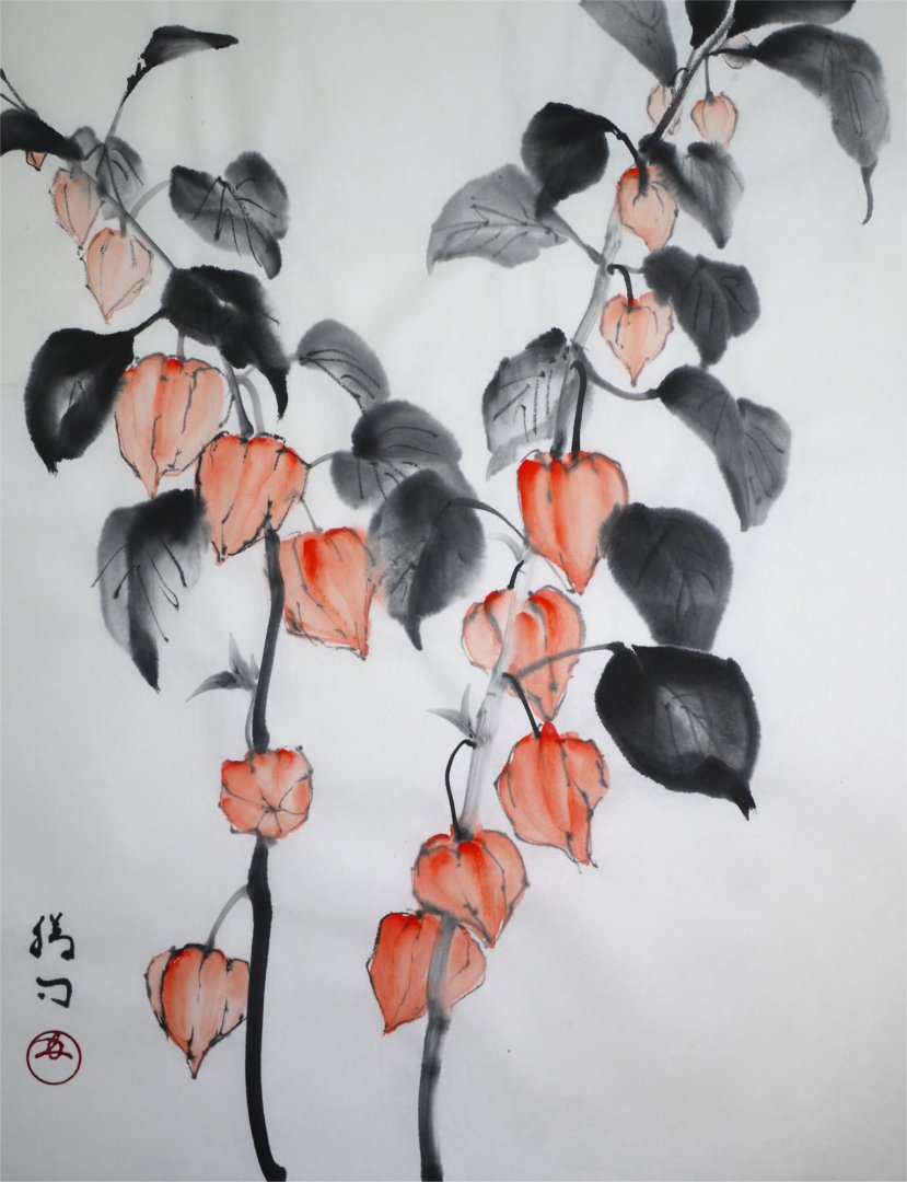 彩墨画「ホオズキ」福田勝司筆